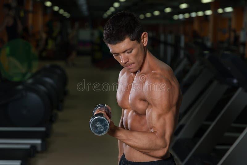 Exercício muscular bronzeado do homem com pesos no gym fotografia de stock