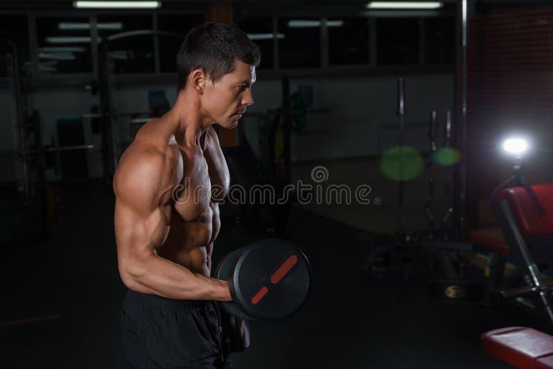 Exercício muscular do atleta com pesos pesados foto de stock
