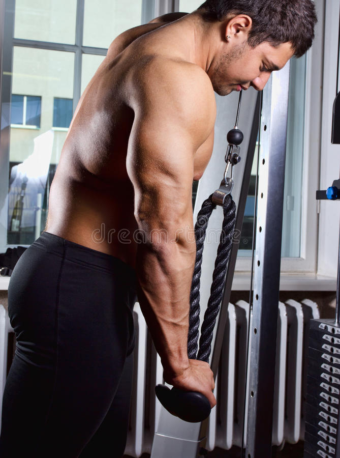 Exercício para o triceps fotos de stock royalty free