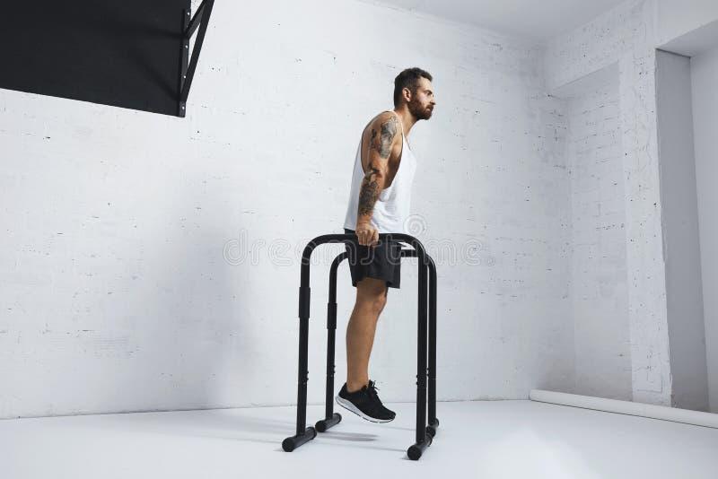 Exercícios calistênicos e do peso do corpo foto de stock royalty free