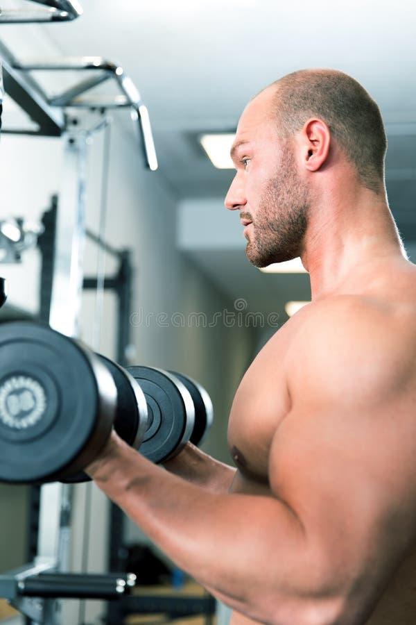 Exercícios do exercício do esporte do gym da aptidão fotos de stock royalty free