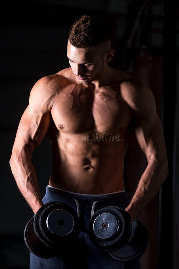 Exercícios do halterofilismo para ombros fotos de stock