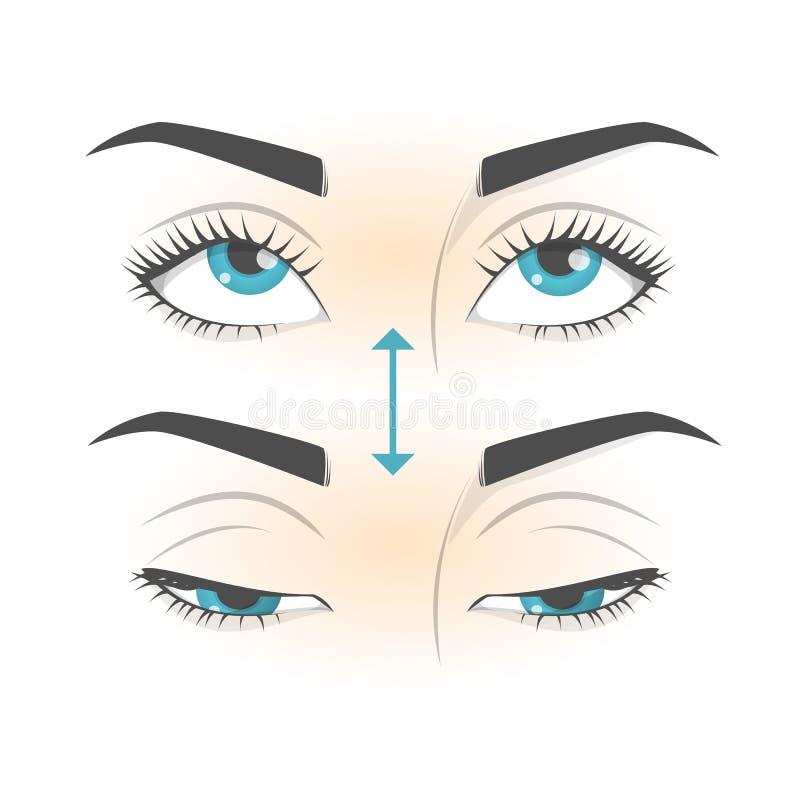Exercice d'oeil Mouvement pour la relaxation de yeux Globe oculaire, cil illustration stock