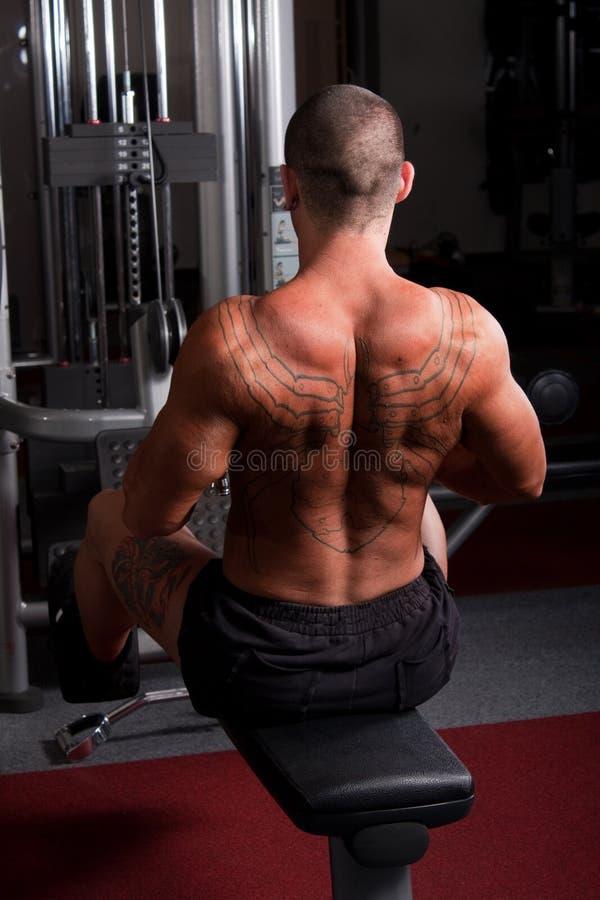 Exercice de Bodybuilder photographie stock