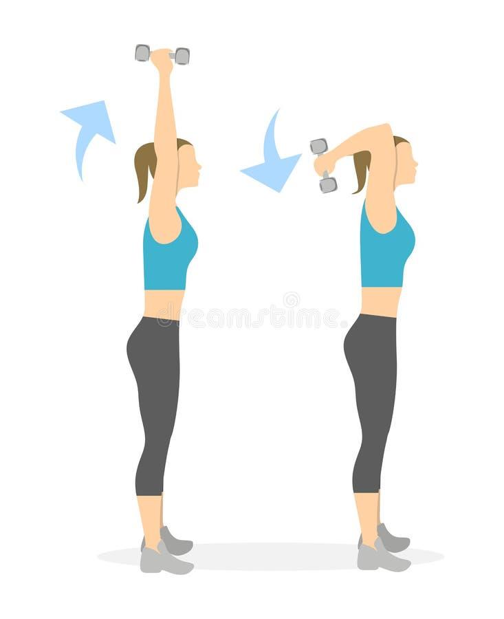 Exercice de bras pour des femmes illustration stock