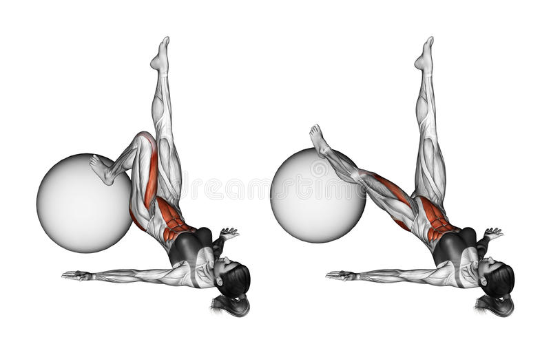 Exercice de Fitball Extension d'une jambe sur le fitball femelle illustration stock