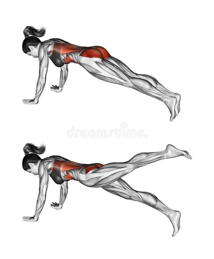 Exercice de forme physique Courroie d'extension de hanche en position femelle illustration de vecteur