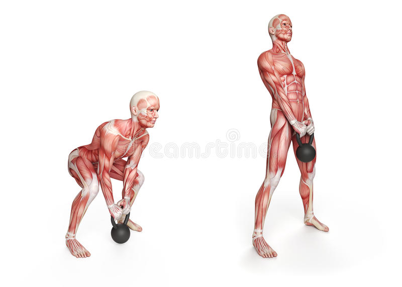 Exercice de Kettlebell illustration stock