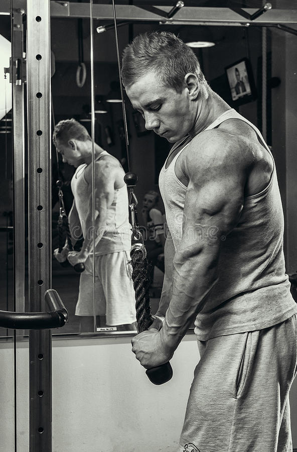Exercice de triceps image stock