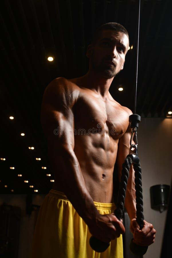 Exercice de triceps d'un jeune Bodybuilder image libre de droits