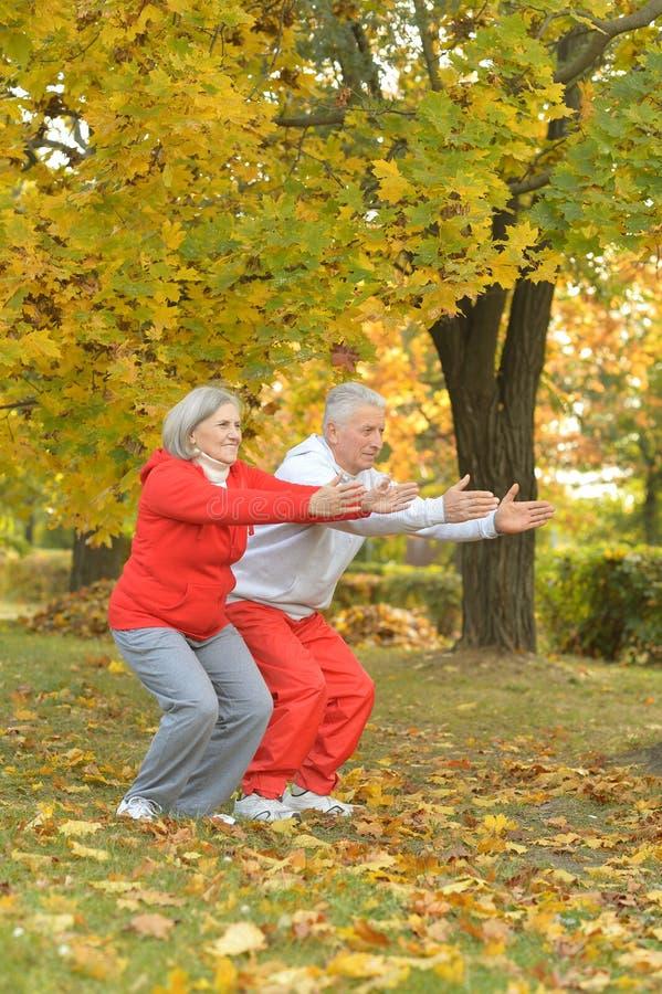 Download Exercice Supérieur Convenable De Couples Photo stock - Image du âgé, mûr: 76081690
