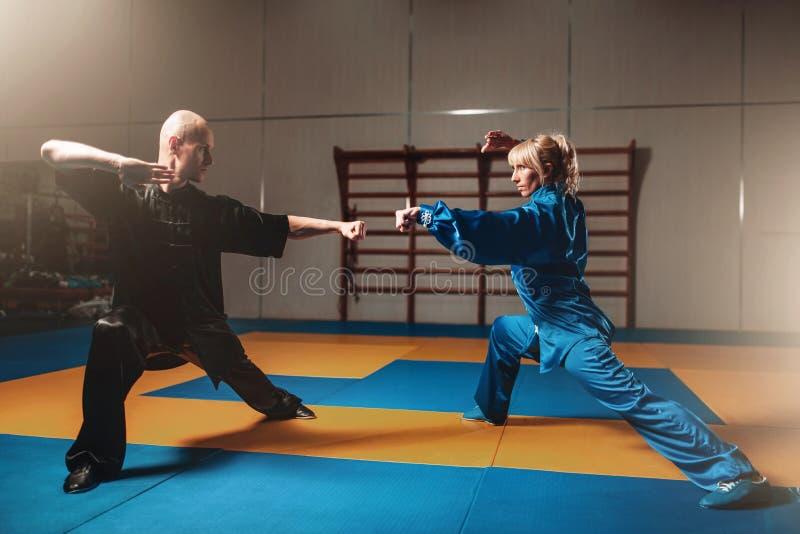 Exercices masculins et femelles de combattants de wushu d'intérieur photographie stock