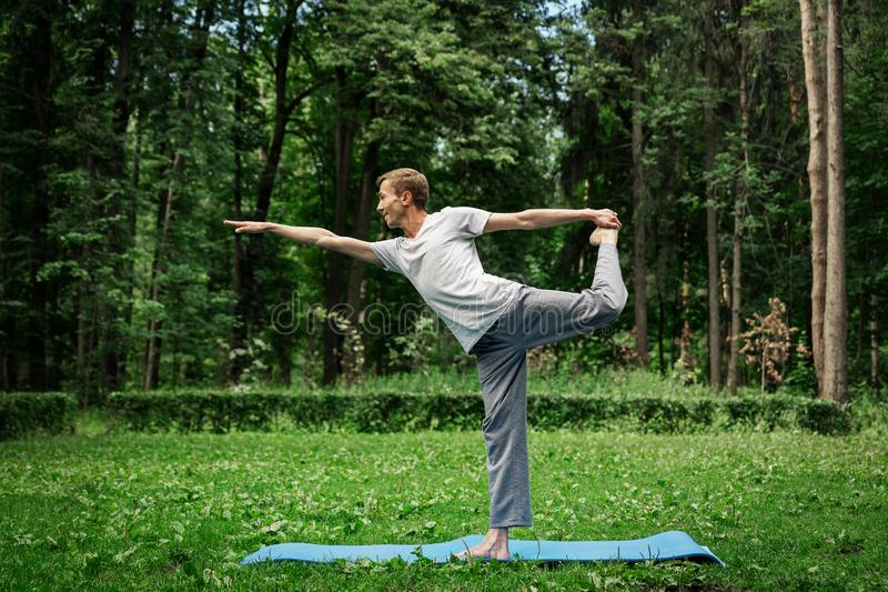 Exercise swallow. Fitness, man does yoga in tree pose in park royalty free stock photos