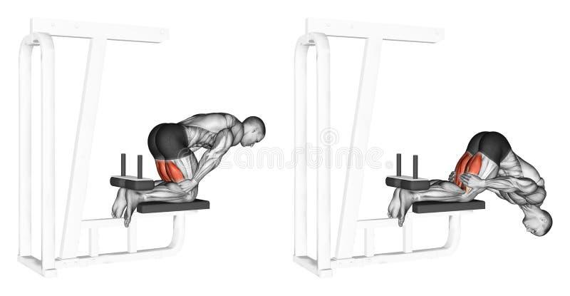 exercising Alzamientos con las rodillas para los tendones de la corva stock de ilustración
