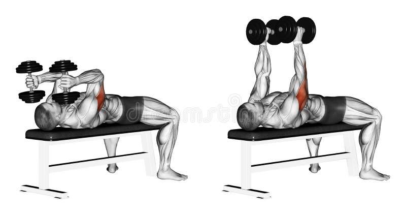 exercising Brazos de extensión con la mentira de las pesas de gimnasia ilustración del vector