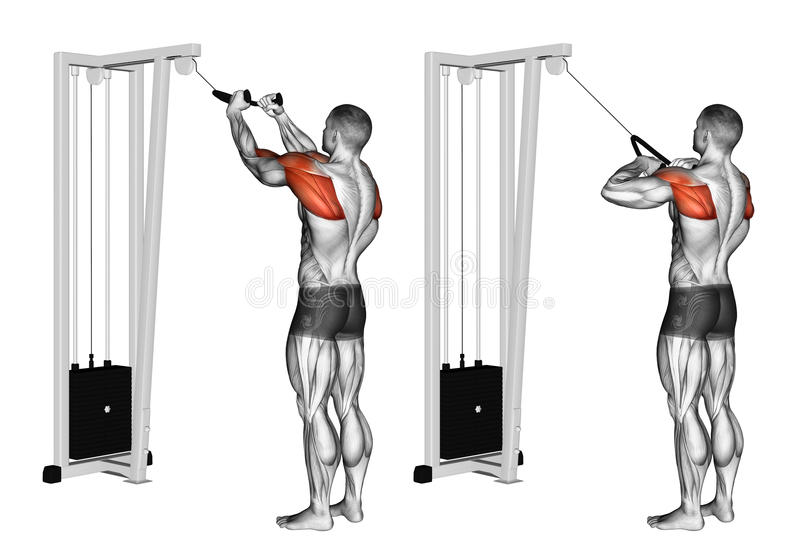 Exercising. Cable Rope Rear Delt Rows royalty free stock images