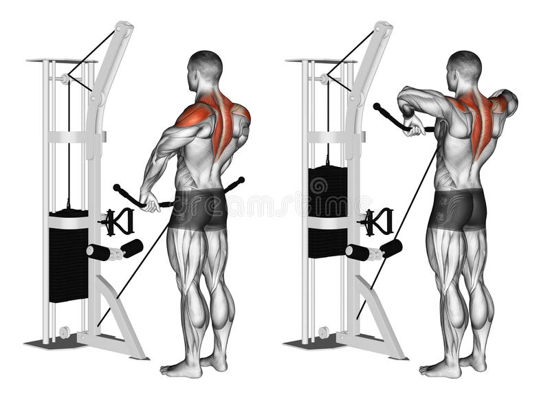 Exercising. Cable Upright Rows stock images