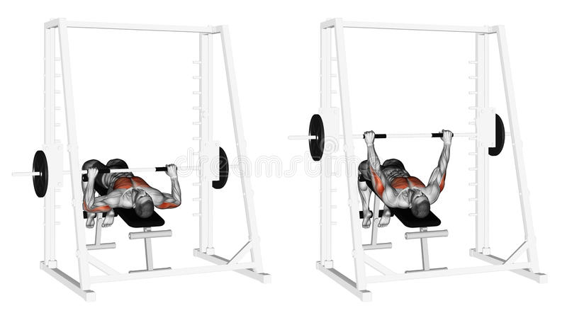 Exercising. Decline Smith Machine Bench Press. Decline Smith Machine Bench Press. Exercising for bodybuilding. Target muscles are marked in red. Initial and vector illustration