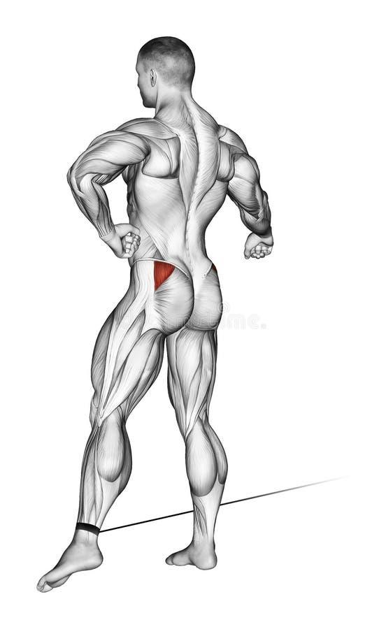 exercising El pie se mueve al lado con el bloque más bajo libre illustration
