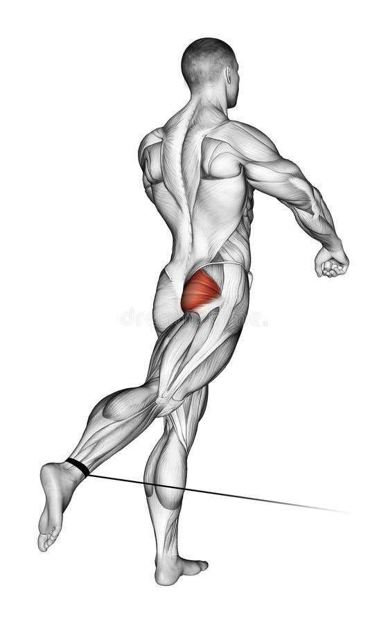 exercising El pie se mueve de nuevo al bloque más bajo ilustración del vector