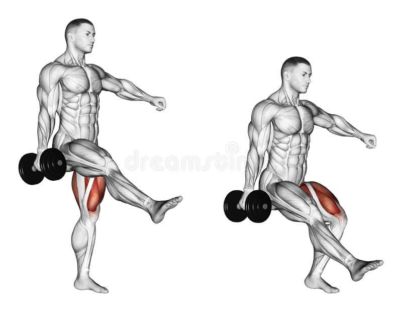 exercising El ponerse en cuclillas en una pierna stock de ilustración