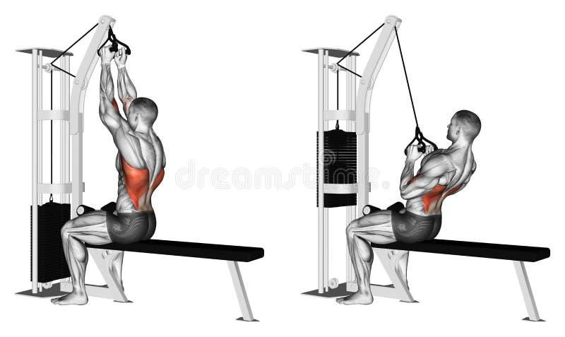 exercising Empuje del apretón superior del paralelo del bloque stock de ilustración