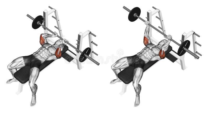 Exercising. Extension barbell lying stock illustration
