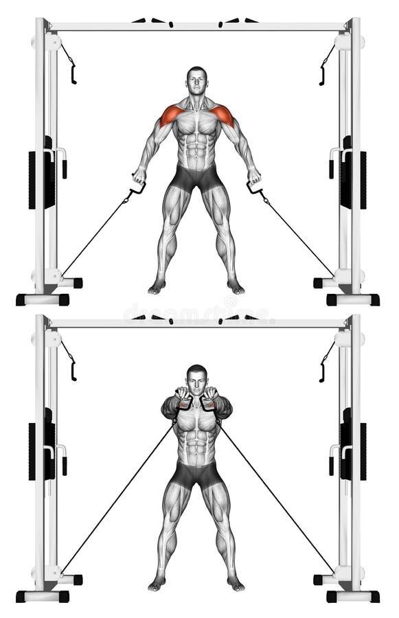 exercising Frente del aumento del cable de los hombros stock de ilustración