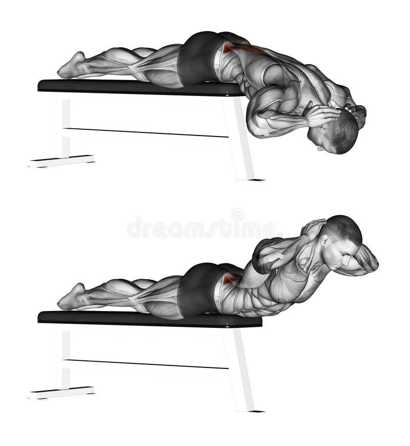 exercising Hiperextensiones sin banco de la hiperextensión stock de ilustración