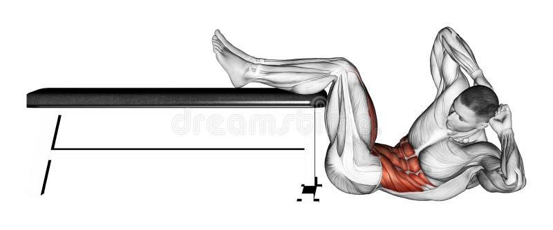 exercising Instortend torso met scheenbeen op de bank royalty-vrije illustratie