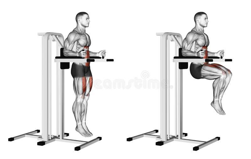 Exercising Knee Raise On Parallel Bars Stock Illustration