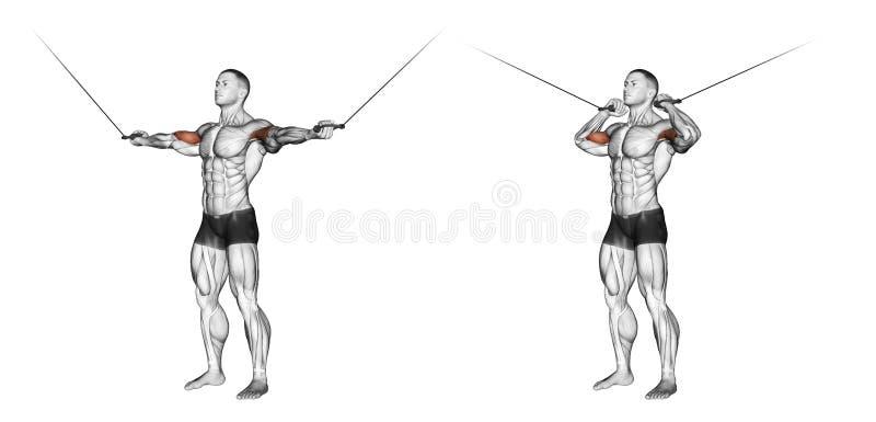 exercising Krullen met handvatten hogere blokken stock illustratie