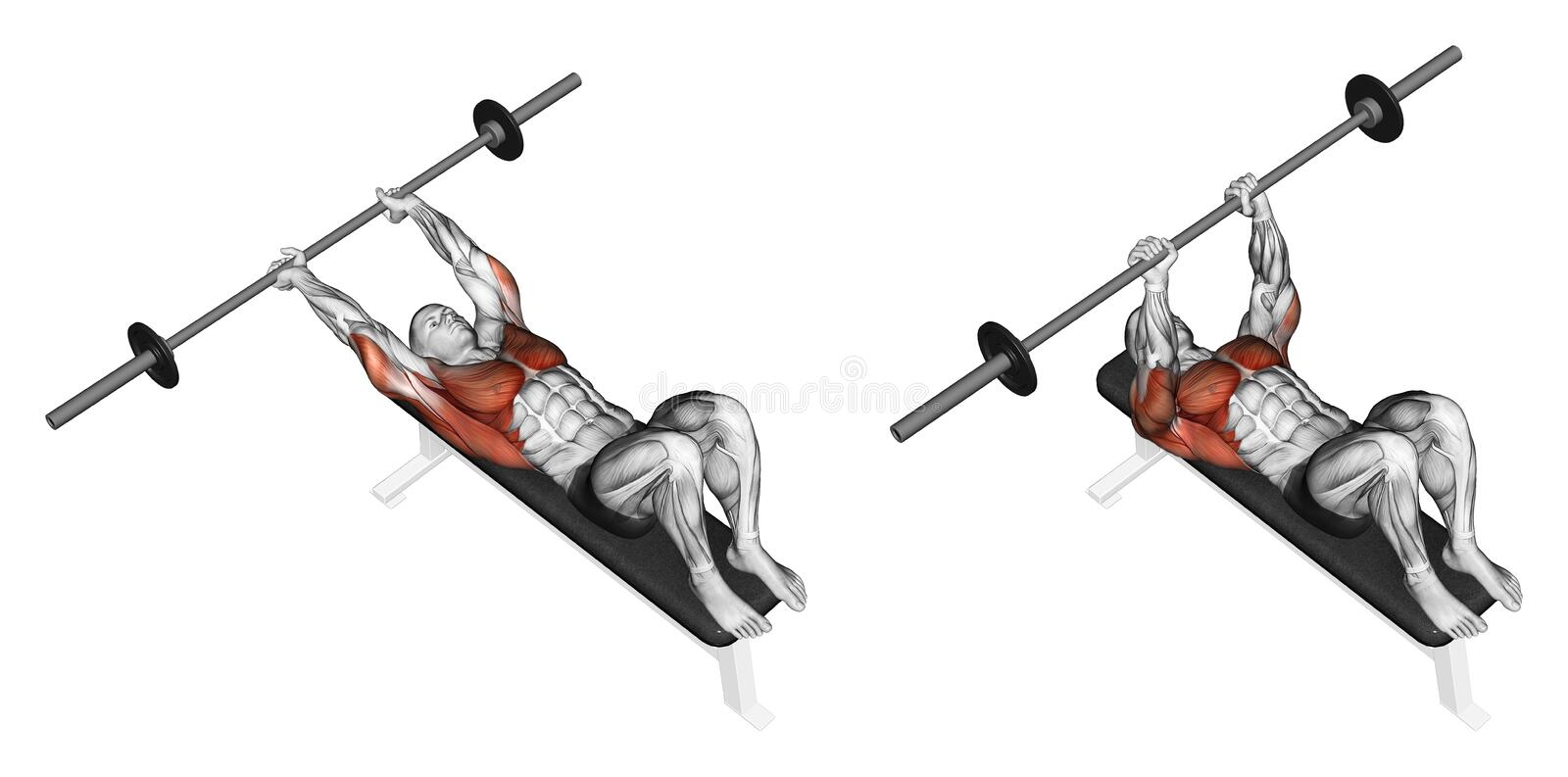 Exercising. Link rod lying over his head. Link rod lying over his head. Exercising for bodybuilding Target muscles are marked in red. Initial and final steps stock illustration