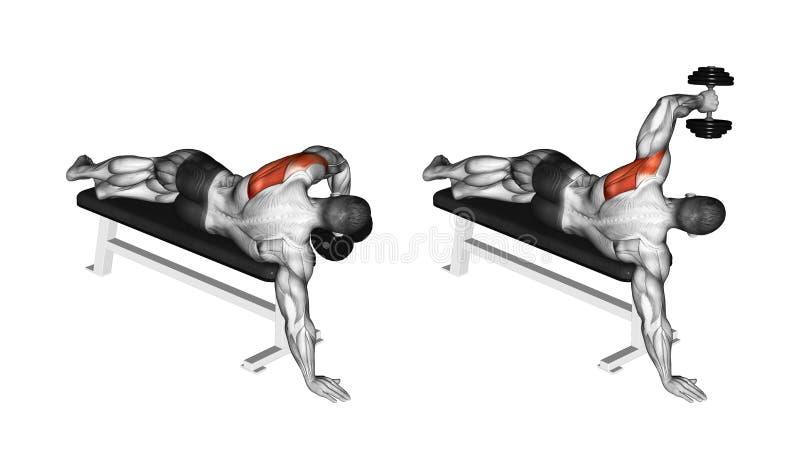 exercising Mano de la ventaja con un deltoideo de la parte posterior de la pesa de gimnasia ilustración del vector