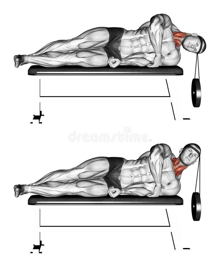 exercising Mentira lateral de la cabeza elevadora stock de ilustración
