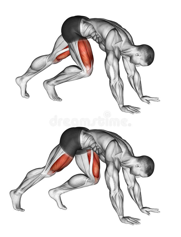 Exercising. Mountain Climbers royalty free stock photography