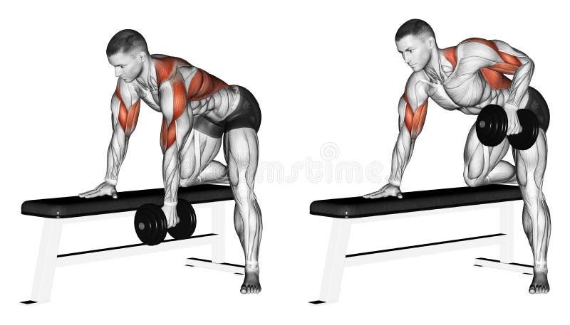 exercising Pesa de gimnasia del final con una mano stock de ilustración