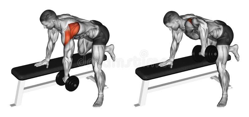 exercising Pesas de gimnasia del empuje en el deltoideo de la parte posterior de la cuesta ilustración del vector