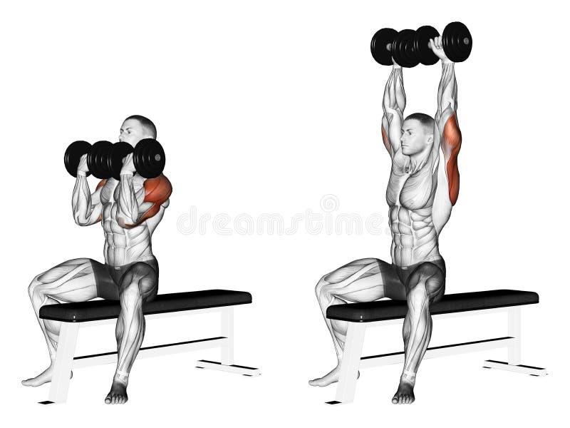 exercising Prensa de banco de alternancia de la pesa de gimnasia con la rotación de la muñeca ilustración del vector