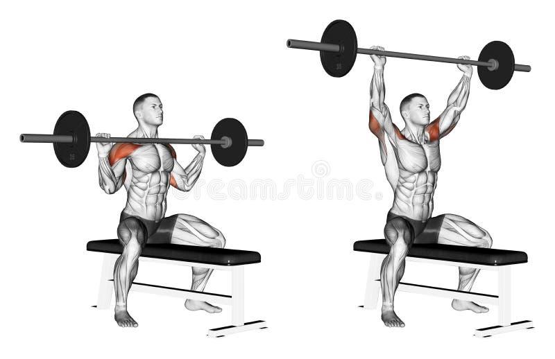 exercising Prensa de una barra con una sentada del pecho ilustración del vector