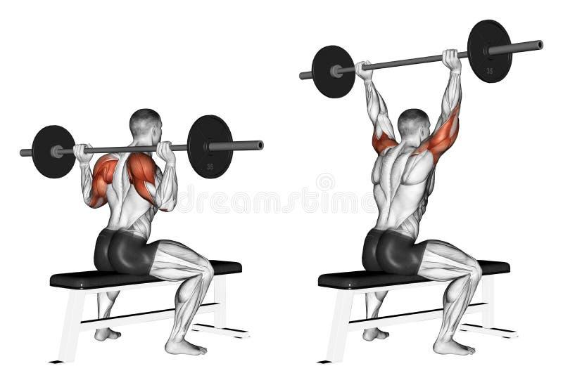 exercising Prensa de una barra debido a la sentada principal libre illustration