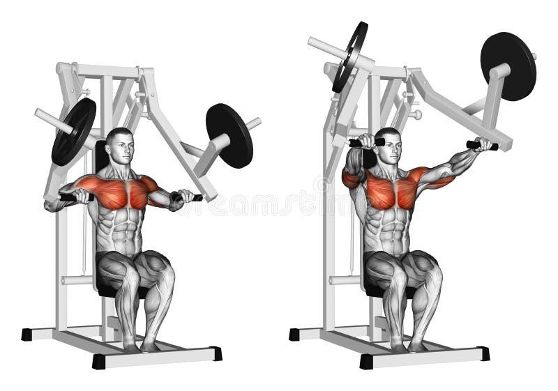 exercising Presione el simulador del gimnasio de la fuerza del martillo ilustración del vector