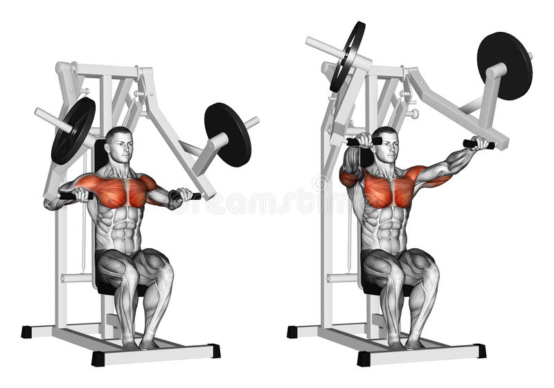 Exercising. Press hammer strength gym simulator. Press hammer strength gym simulator. Exercising for bodybuilding Target muscles are marked in red vector illustration