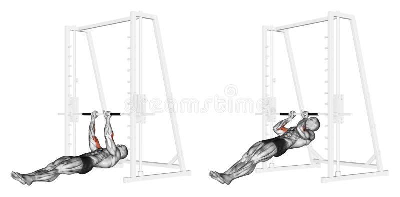 Exercising. Pull-ups on the brachialis royalty free illustration