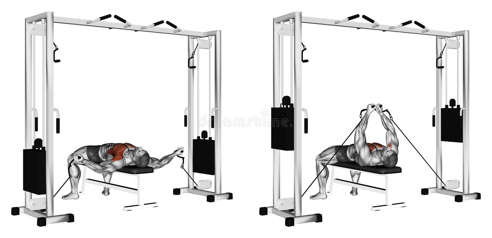 Exercising. Reduction of arms to lower block royalty free stock photo
