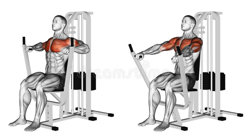 Exercising. Seated chests press royalty free stock photography