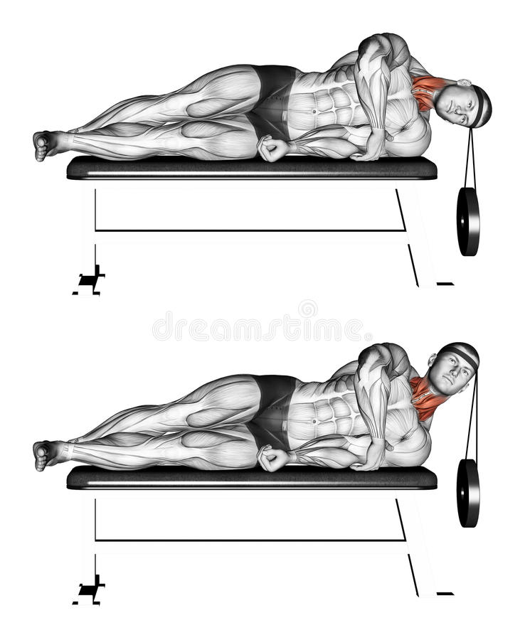 Exercising. Side lifting head lying. Side lifting head lying. Exercising for bodybuilding. Target muscles are marked in red. Initial and final steps stock illustration