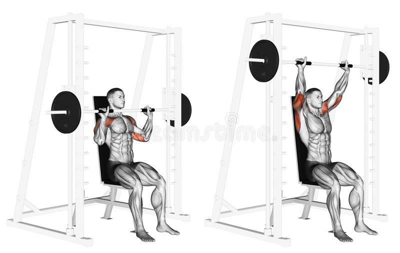 Exercising. Smith Machine Shoulders Press stock photography