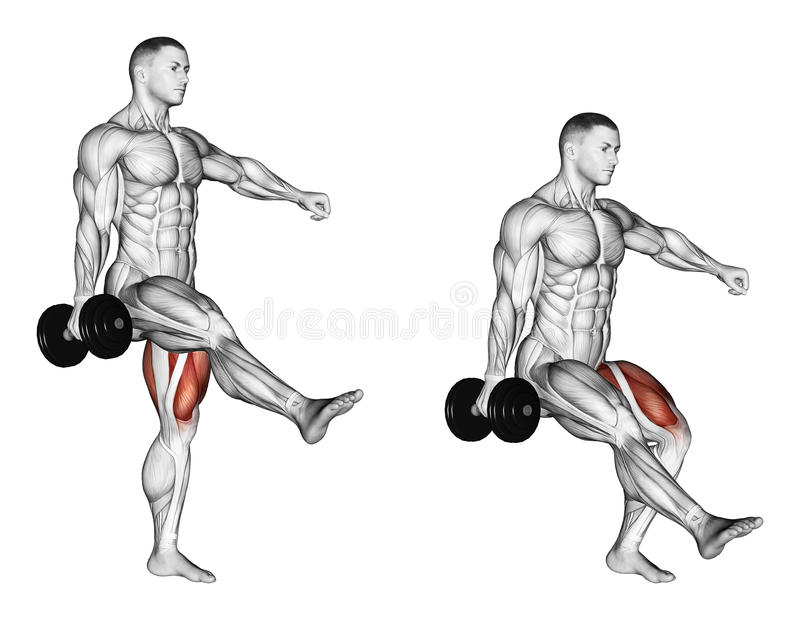 Exercising. Squatting on one leg. Squatting on one leg. Exercising for bodybuilding Target muscles are marked in red. Initial and final steps stock illustration
