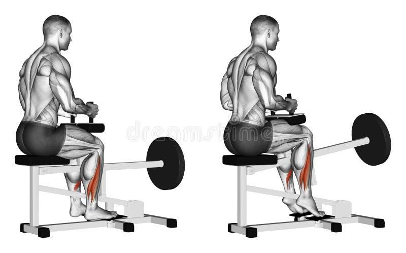 exercising Stijging op tenen voor soleus in simulator stock illustratie